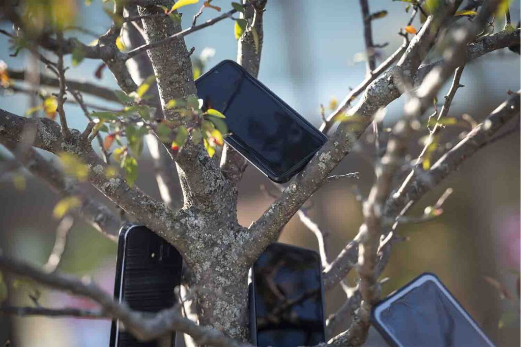 Amazon Drivers Hang Smartphones on trees